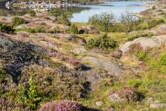 Göteborg-Morgonpromenad-vid-havet-F