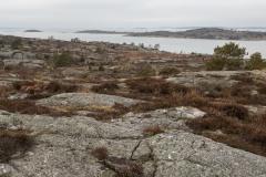 Göteborg-Nodre-Älvs-Estuarium-2