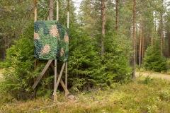 Jakttorn i skogarna