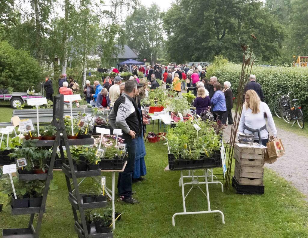 Växtmarknad Enhagen 1