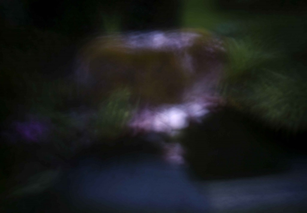 Nattfoto i trdg 3