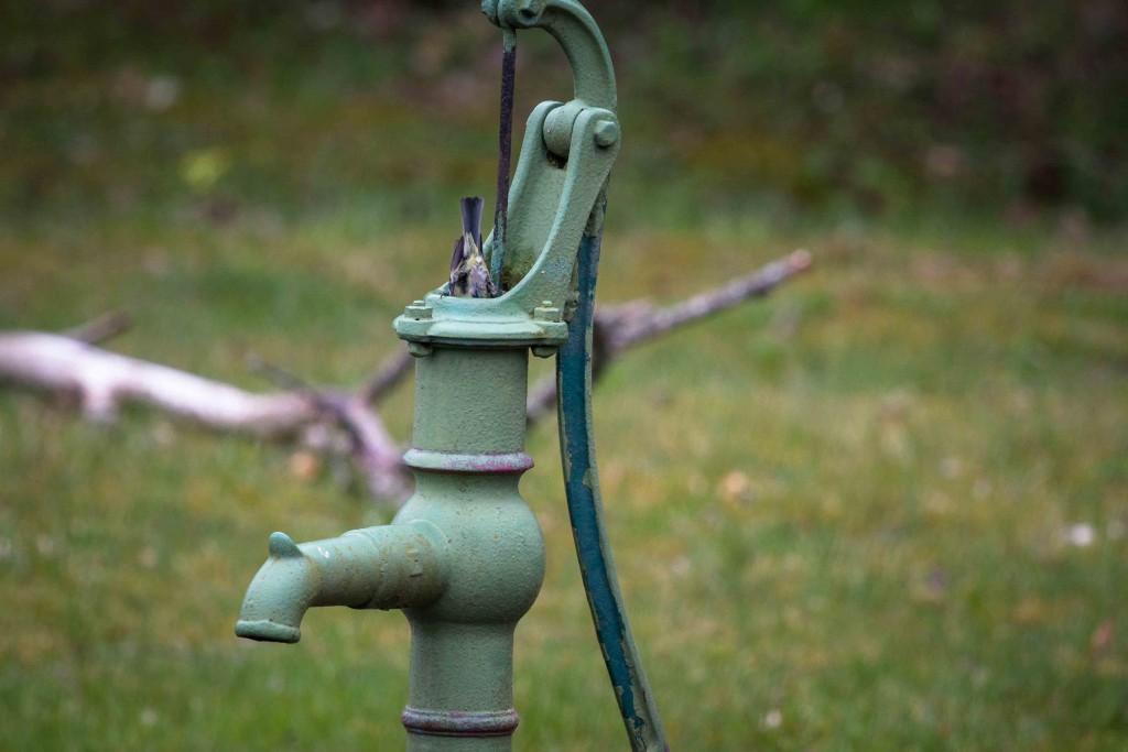 Blåmesparet i vattenpumpen-3