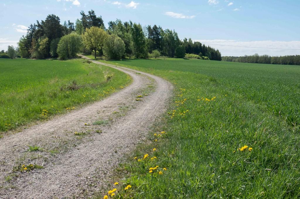 Promenad 24 maj Herrevad