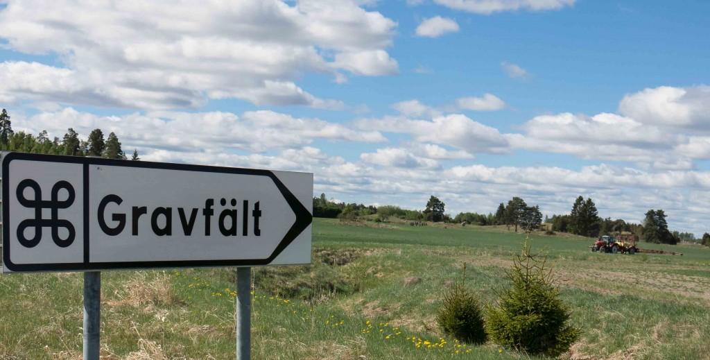 Promenad 26 maj Årby gravfält-5