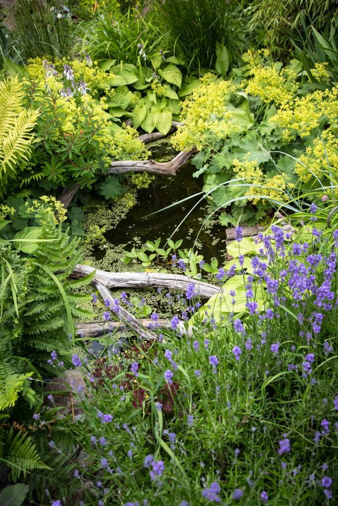 Öppen trädgård lands-1-8