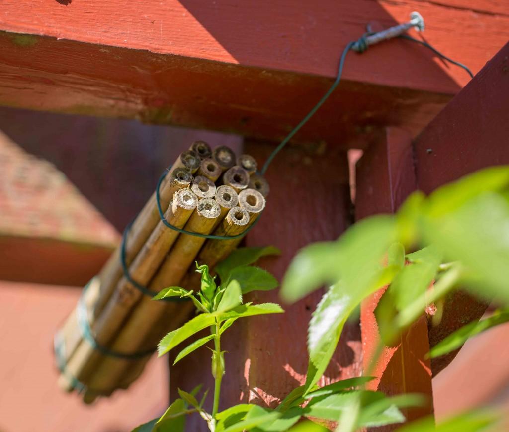 Insektshotellet-1-4