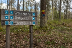 Infotavlor där stigarna på Djurgården startar