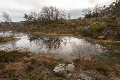 Göteborg-Nodre-Älvs-Estuarium-3