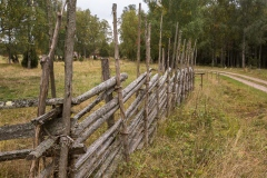 Gärdsgård vid Skogsmuren